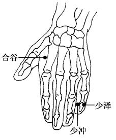 麦粒肿的刮痧视频_百病刮痧_中华疗法网中医采购图片