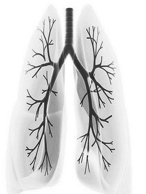 慢性支气管炎缓解期有哪些要注意_慢性支气管炎常识_中华中医网