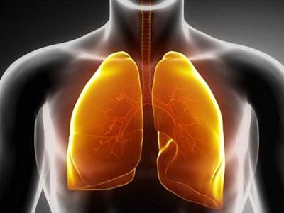 原发性支气管肺癌